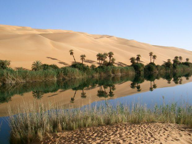Oasis Libya