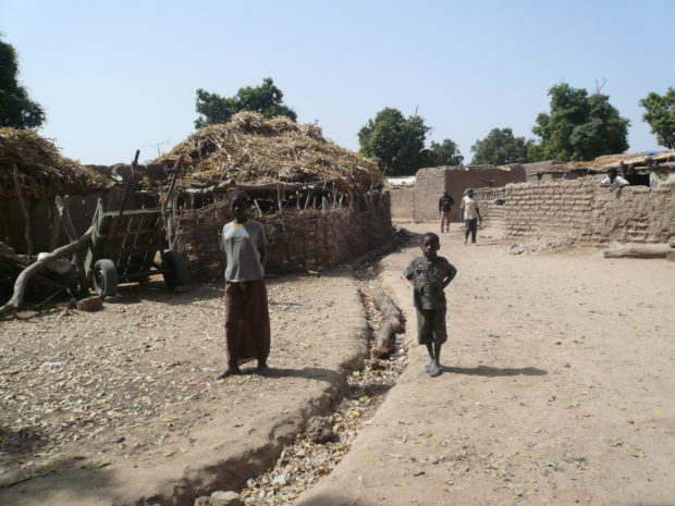 A typical village in southern Mali (c) Christian von Hiller