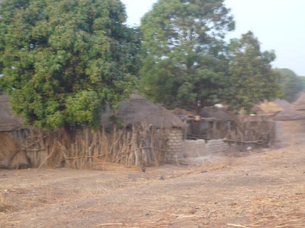 Village in the Sahel zone in southern Mali (c) Christian v. Hiller